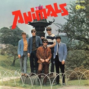 all+about+the+animals+-+front